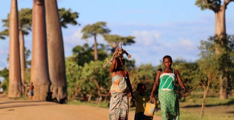 ceļojums uz Madagaskaru